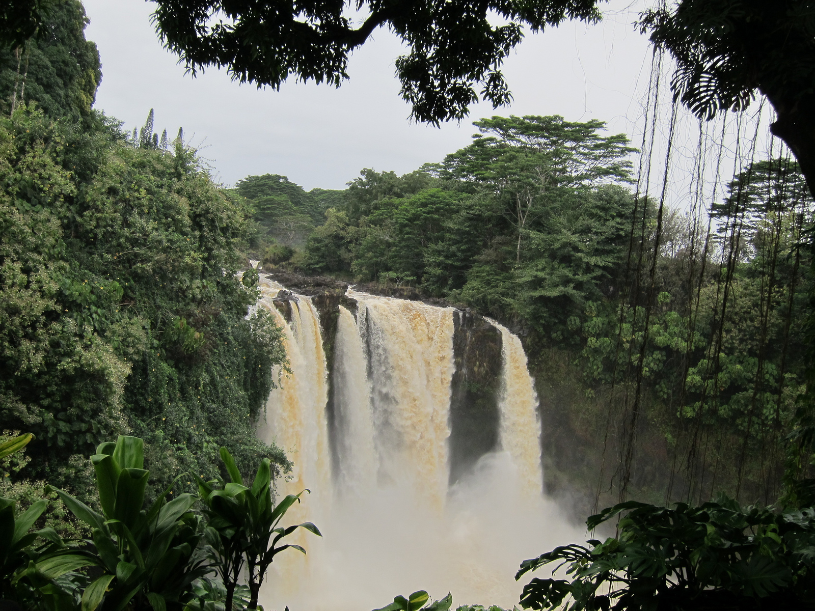Rainbow Falls in the rain